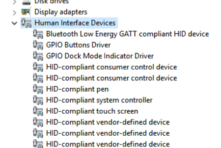 Human Interface Devices tree within Device Manager